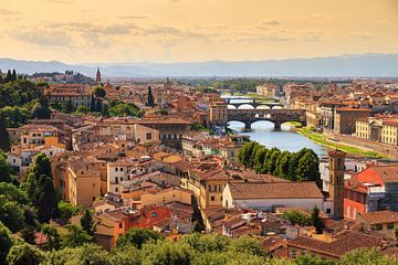 Sommer in Florenz von Dennis van de Water