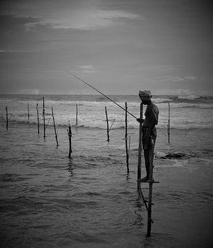 Paalvisser in Sri Lanka van Jeroen Bussers