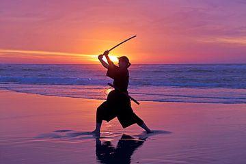 Junge Samurai-Frau mit einem japanischen Schwert. (katana) mit Sonnenuntergang am Strand von Nisangha Masselink