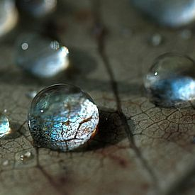 crystal drops sur Anouschka Hendriks