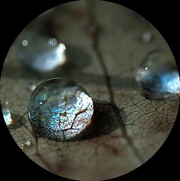 kristalheldere druppels van Anouschka Hendriks