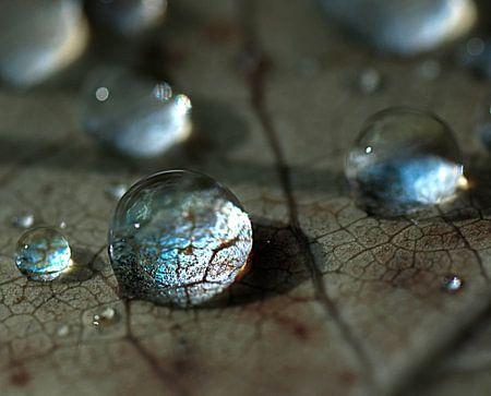 kristalheldere druppels