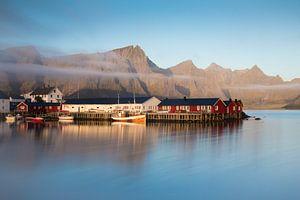 Hamnoy Harbour van