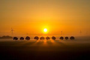 Zonsopgang in de polder. van Vincent Snoek