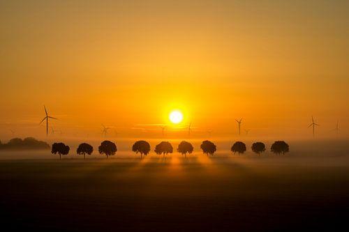 Zonsopgang in de polder.