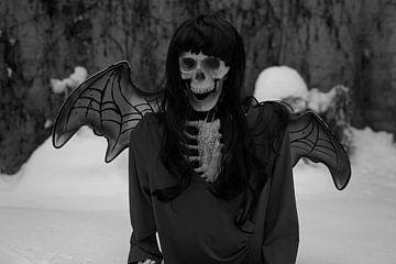Duivel bruid skelet met rode jurk en duivel vleugels in de sneeuw van Babetts Bildergalerie