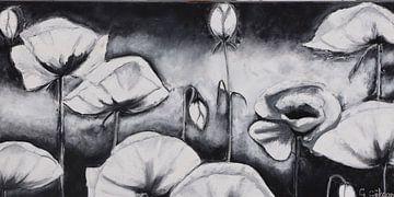 Mohn schwarz-weiß von Gulserin Gokcan