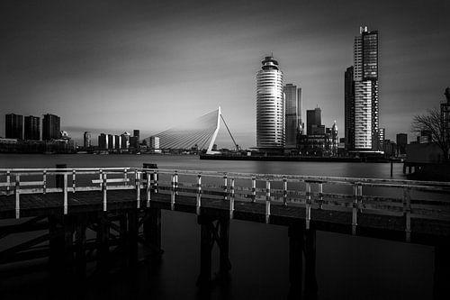 Port of Rotterdam van