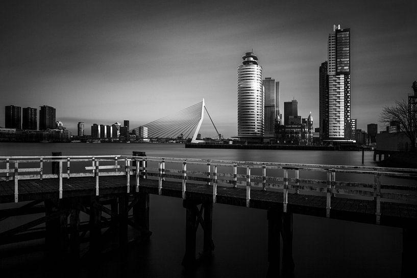 Port of Rotterdam van 010 Raw