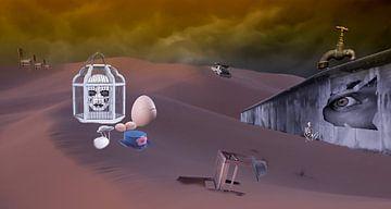 Wüste von Jos Verhoeven