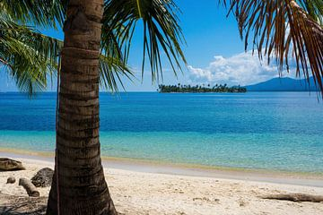 Tropische eilanden in Panama (San Blas) van Michiel Dros