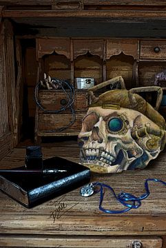 steampunk skull van Dinie de zeeuw