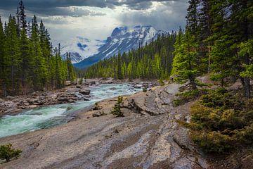 Landschap in Kootenay National Park, Canada van Rietje Bulthuis