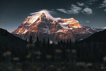 Mount Robson Canada Zonsondergang von Vincent Fennis
