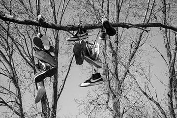 Schoenenboom van Ruud Dumas