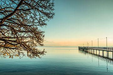 Chiemsee Sonnenuntergang mit Baum und Steg van Holger Debek