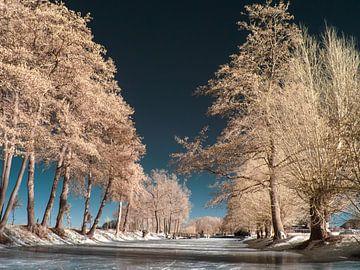 Winterlandschap van Lex Schulte