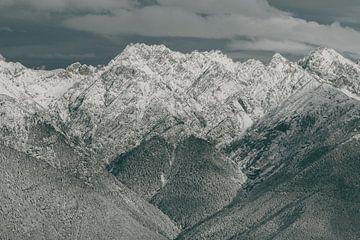 Winters Tafereel in de Oostenrijkse Alpen van Sophia Eerden