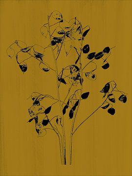 Monnaie du pape en imprimé botanique, jaune ocre