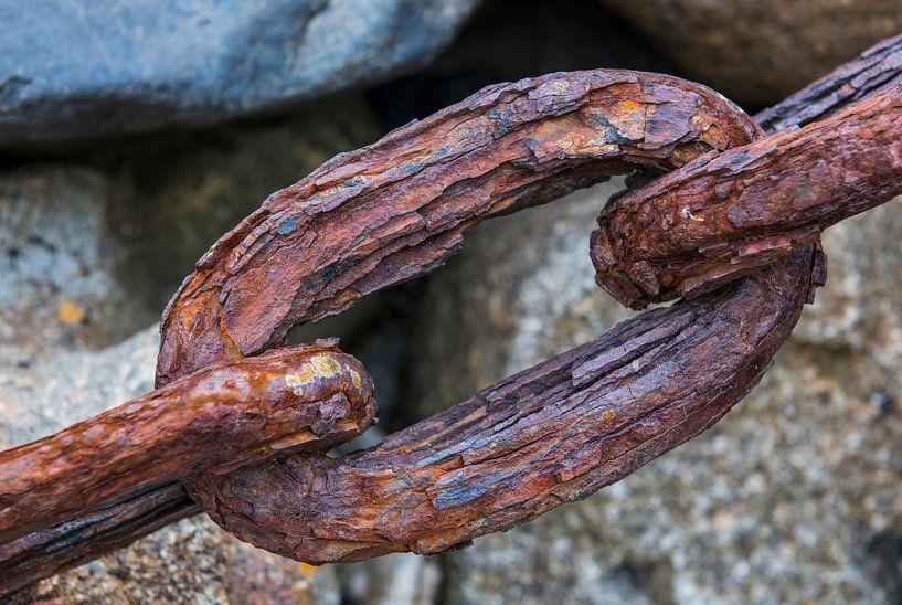 Schakel van oude ketting van Daan Kloeg