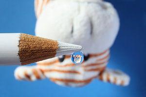 Waterdruppel met reflectie van