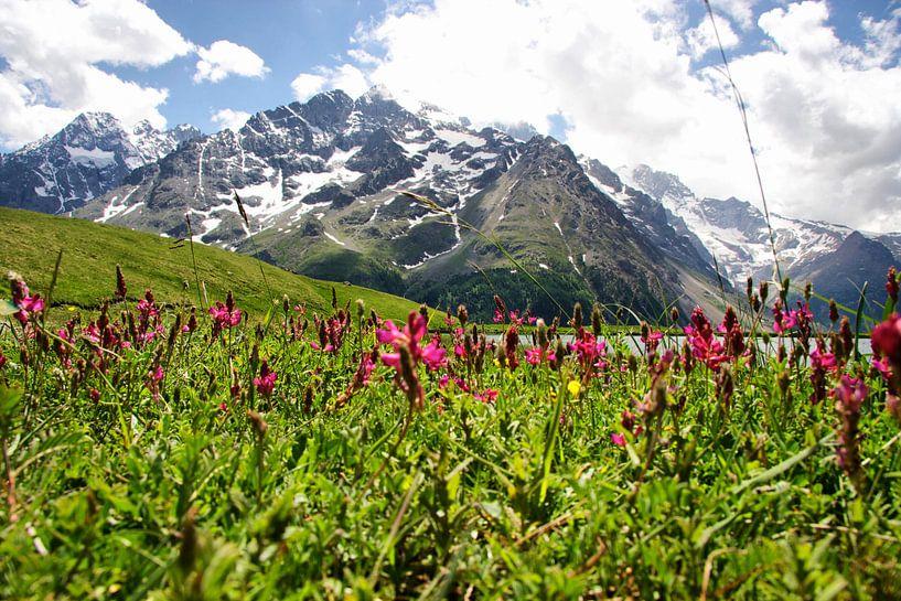Distant Mountain van Stefan Kraan
