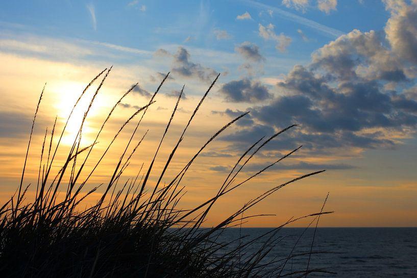 Abendstimmung von Ostsee Bilder