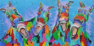 -Pferde mit Humor
