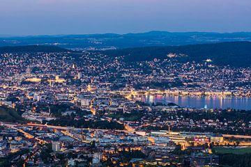 Vue de nuit de l'Uetliberg à Zurich et du lac de Zurich sur Werner Dieterich