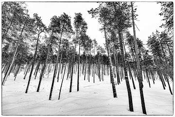 Finnland von Tom Loman