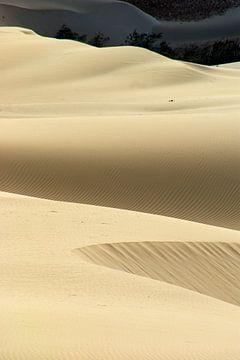 Insel Desert Dunes von Brian Raggatt