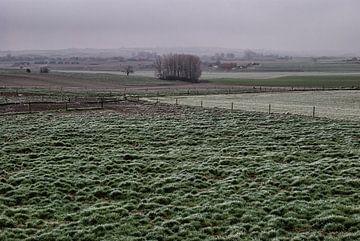 Nebliger Tag im flämischen Feldern von Manuel Declerck