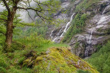 Landschaft im Val Bavona von Peter Eckert