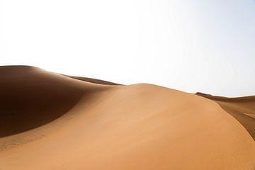 Sahara °2 sur Jesse Barendregt