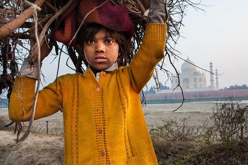 Jongen verzamelt kreupelhout tegenover de Taj Mahal in Agra India. Wout Kok One2expose