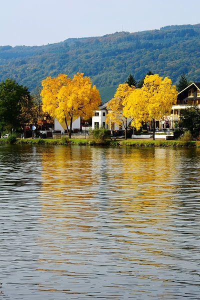 Autumn on the Moselle in Traben-Trarbach van Gisela Scheffbuch