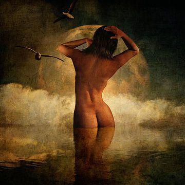 Droom – Soms is het leven te mooi om waar te zijn van Jan Keteleer