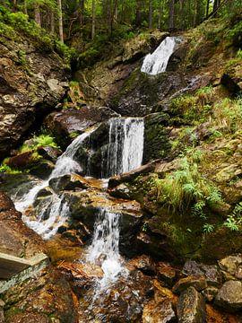 Riesloch watervallen bij Bodenmais, Beieren 12 van Jörg Hausmann