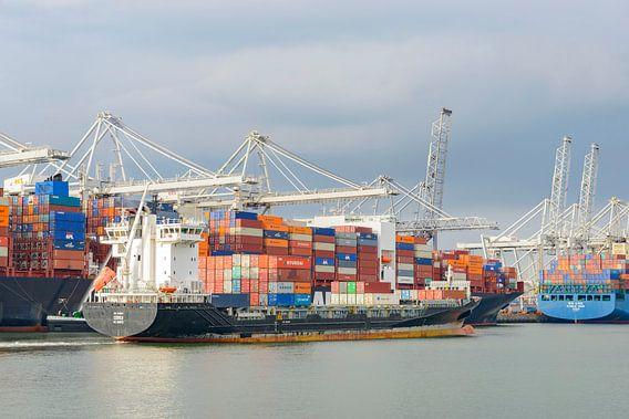 Container schepen in de haven van Rotterdam van Sjoerd van der Wal