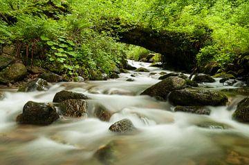 Waterval in Retezat nationaal park in Roemenië van Jaco Visser