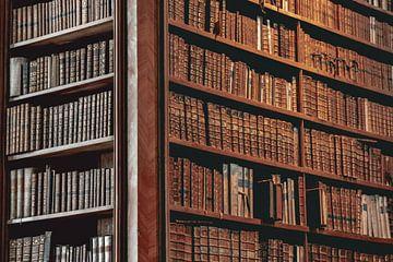 Oude boeken in de Weense bibliotheek van Sophia Eerden