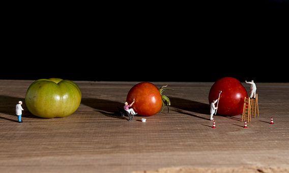 little world verft de tomaten rood