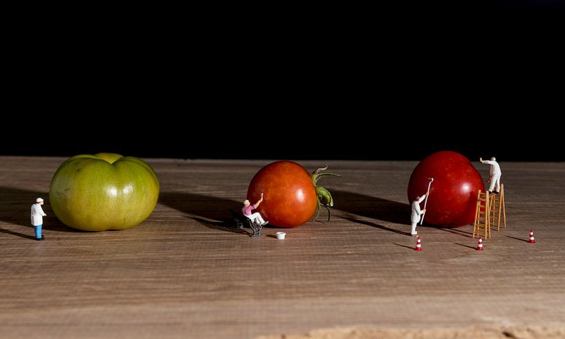 little world verft de tomaten rood van Compuinfoto .