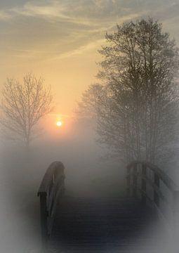 op weg naar de zon von Arjan Niemeijer