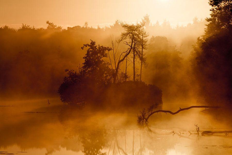 Een prachtige ochtend met zonsopkomst in het met nevel bedekte meer