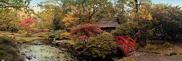 Herbst im japanischen Park von Ariadna de Raadt