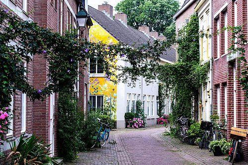Schilderstraat, Den Bosch van Jacq Christiaan