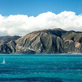 Küste Nordinsel Neuseelands van Thomas Klinder