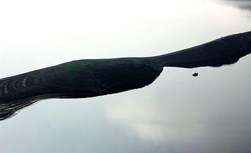Fischen im Sauerland | von Nathan Marcusse