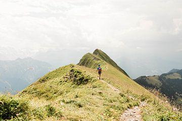 Augstmatthorn in Zwitserland van Djuli Bravenboer
